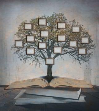 family_tree.jpg?t=1475105168568&name=family_tree.jpg&width=320
