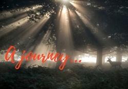 journey_blog.jpg