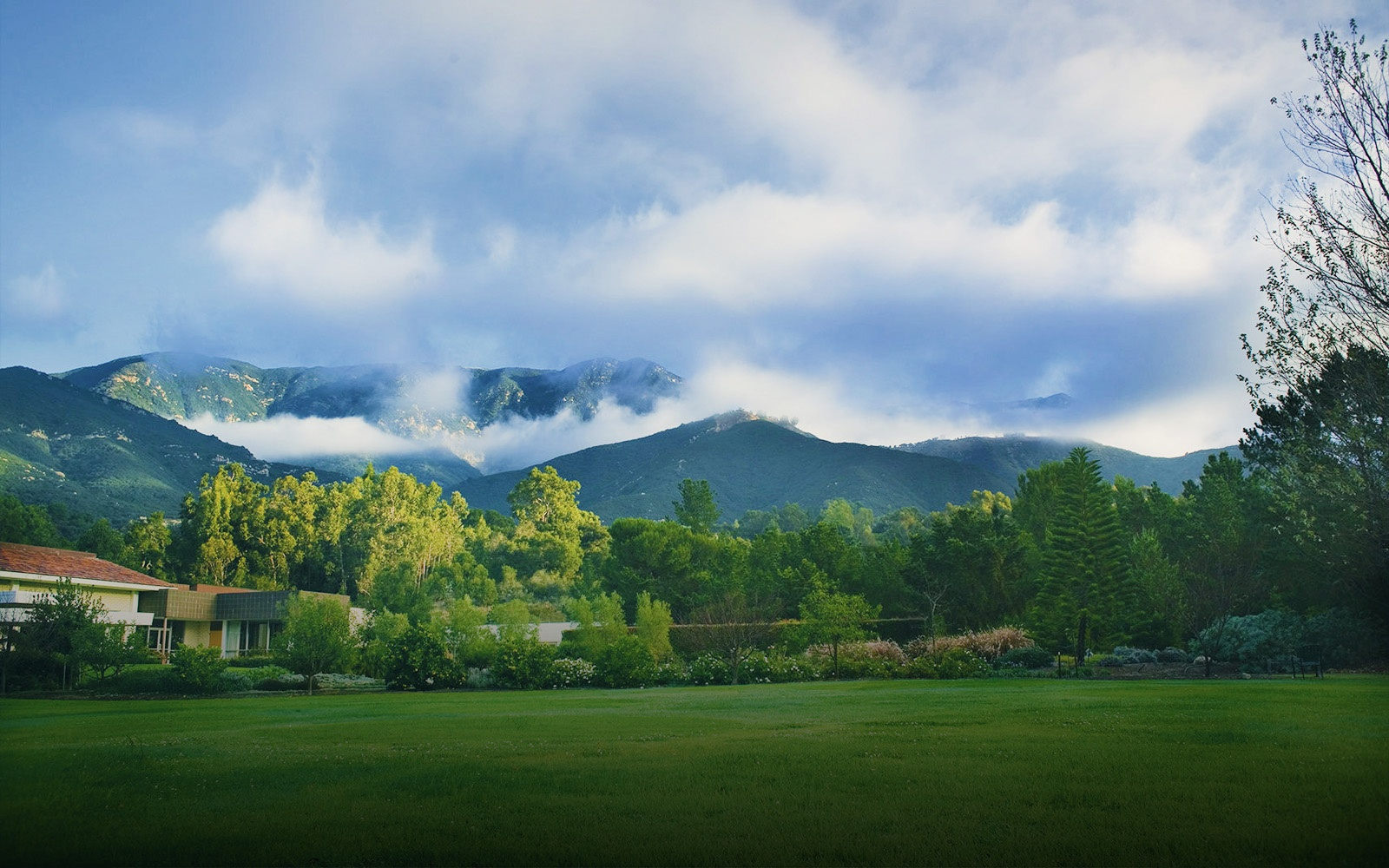 ladera_lane_campus_misty_mountains.jpg
