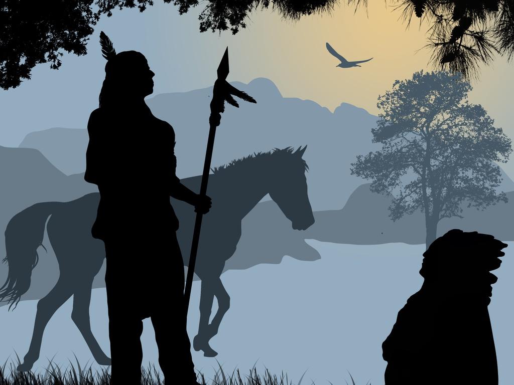 native_american_horse.jpg