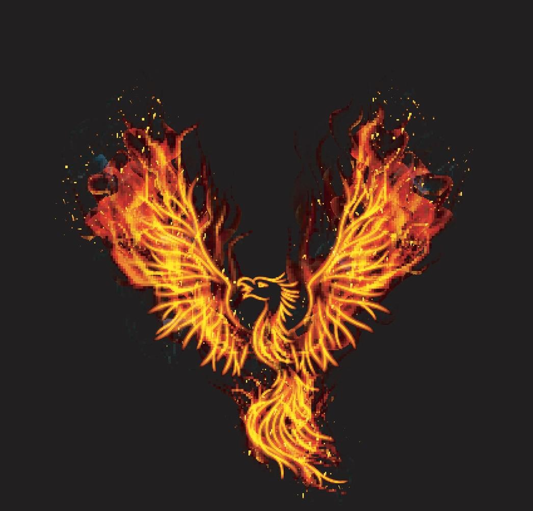phoenix_rising.jpg