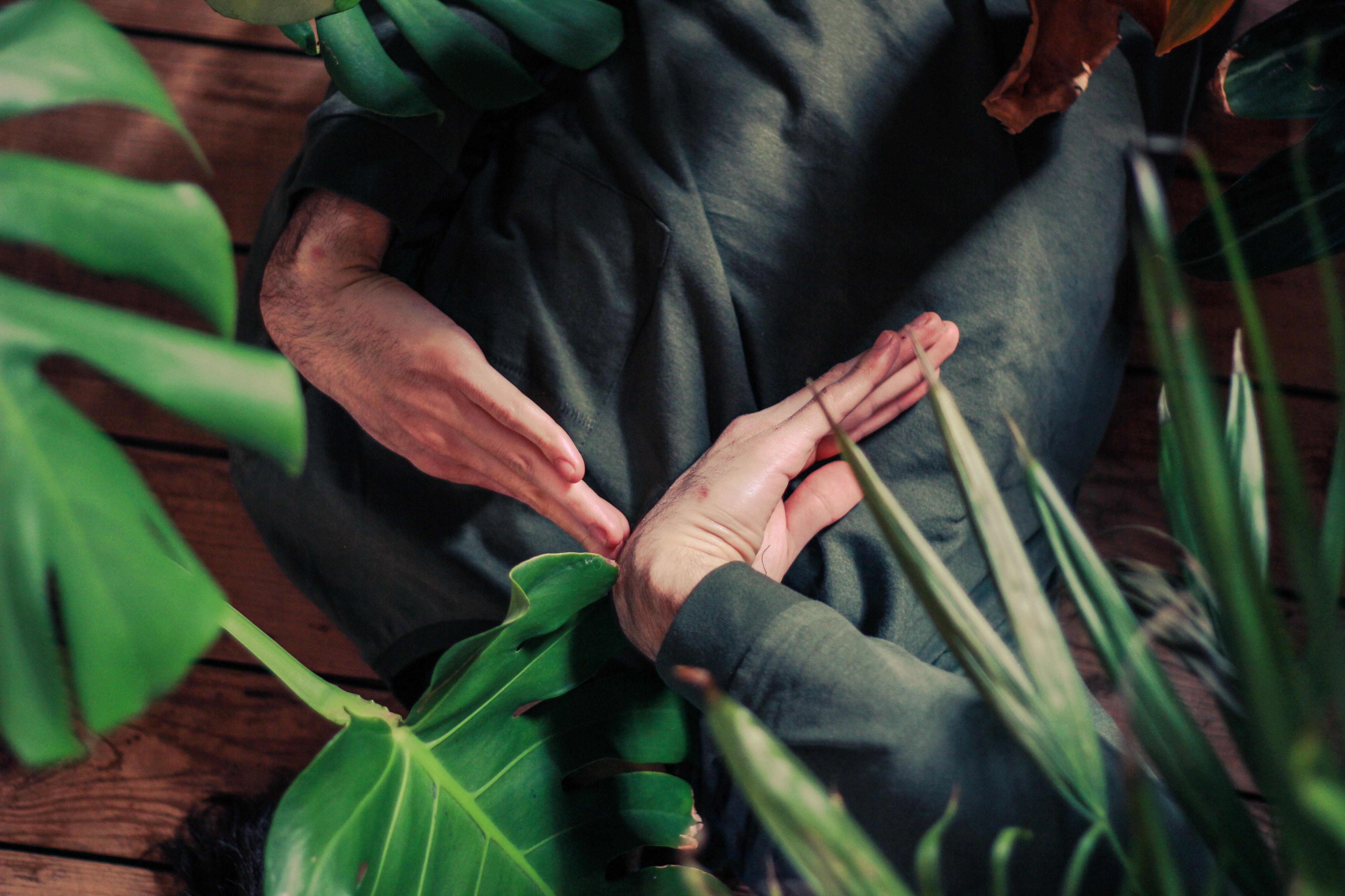hands in garden